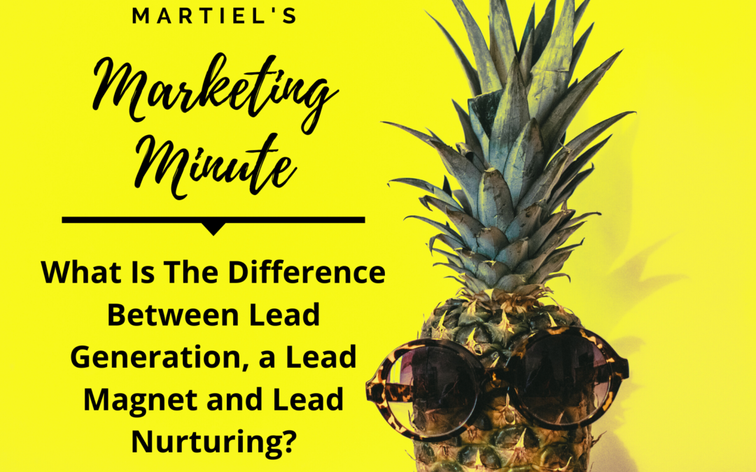 The Difference Between Lead Generation, a Lead Magnet and Lead Nurturing